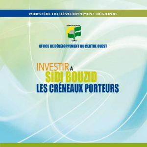 الاستثمار في سيدي بوزيد: منافذ واعدة