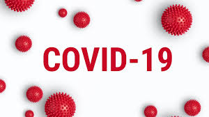 Report on the impact of the Covid pandemic 19